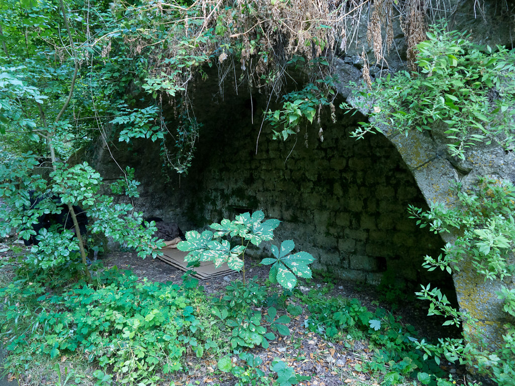 Shelter in the woods, home to a young woman